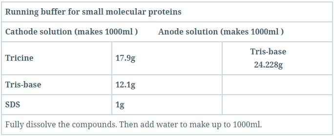 Runing buffer for small molecular proteins